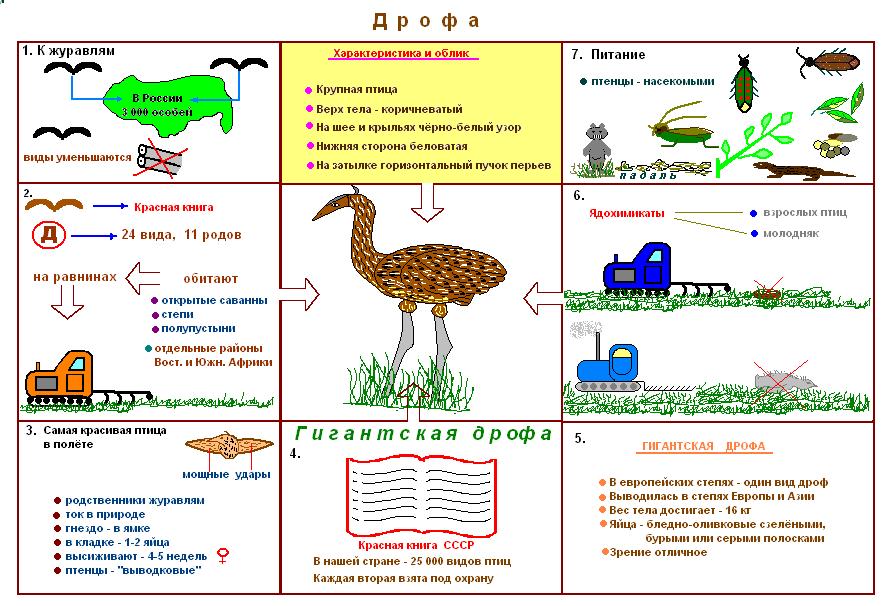 Значки и символы для одноклассников ...: pictures11.ru/znachki-i-simvoly-dlya-odnoklassnikov.html
