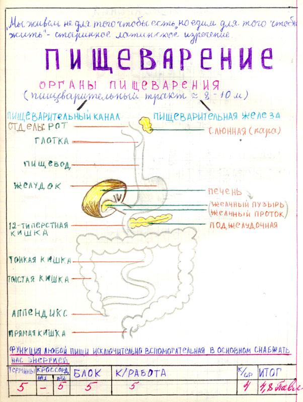 титульный лист лабораторной работы образец