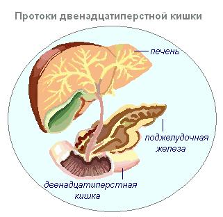 Лечение вен в брянске